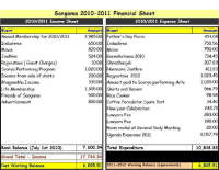 Financial_Summary_2010_2011